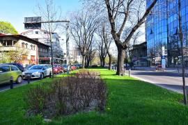 Dorobanti, Bucuresti